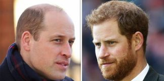 Prince William and Prince Harry are in an