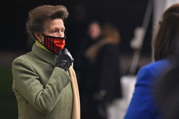 princess anne news queen new firm princess royal pictures royal family latest