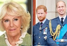 CAMILLA CHARLES PRINCE HARRY WILLIAM ROYAL FAMILY