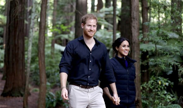 Prince Harry and Meghan Markle will face an new book shortly