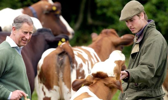 Prince Charles with son Prince William on a farm