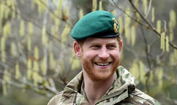 Prince Harry: Harry missed out on crucial role claims commentator