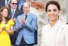 Kate Middleton: Ring Prince William royals