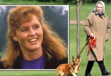 Sarah Ferguson Royal Family queen corgi news latest