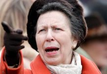 princess anne news royal family princess royal