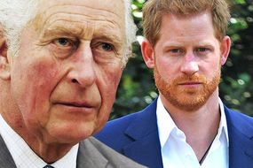 Prince Harry's email to Charles 'justifying' why he and Meghan agreed to Oprah tell-all