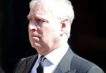 prince andrew news duke of york military service
