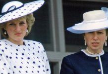 princess anne princess diana relationship royal