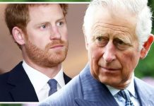 Prince Charles Prince Harry news latest update freeze