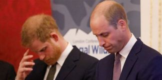 Prince Harry: The royal is said to have 'misinterpreted' his brother's worries(Image: GETTY)