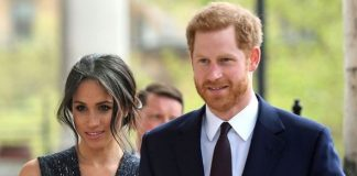Harry and Meghan have been criticised for buying the domain name the day their daughter was born(Image: GETTY)