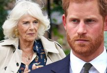 Prince Harry's attack on Camilla could be very damaging