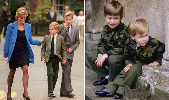 Harry and William growing up.