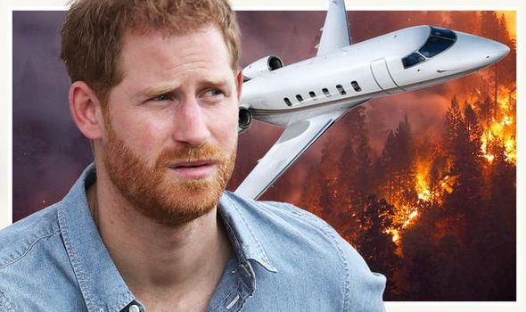 Prince Harry has taken a private jet home from a polo match