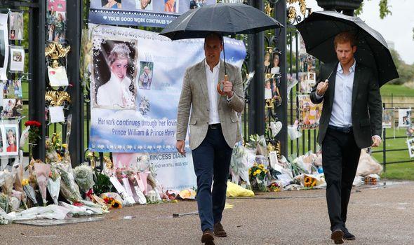 Princess Diana memorial, Prince Harry and William