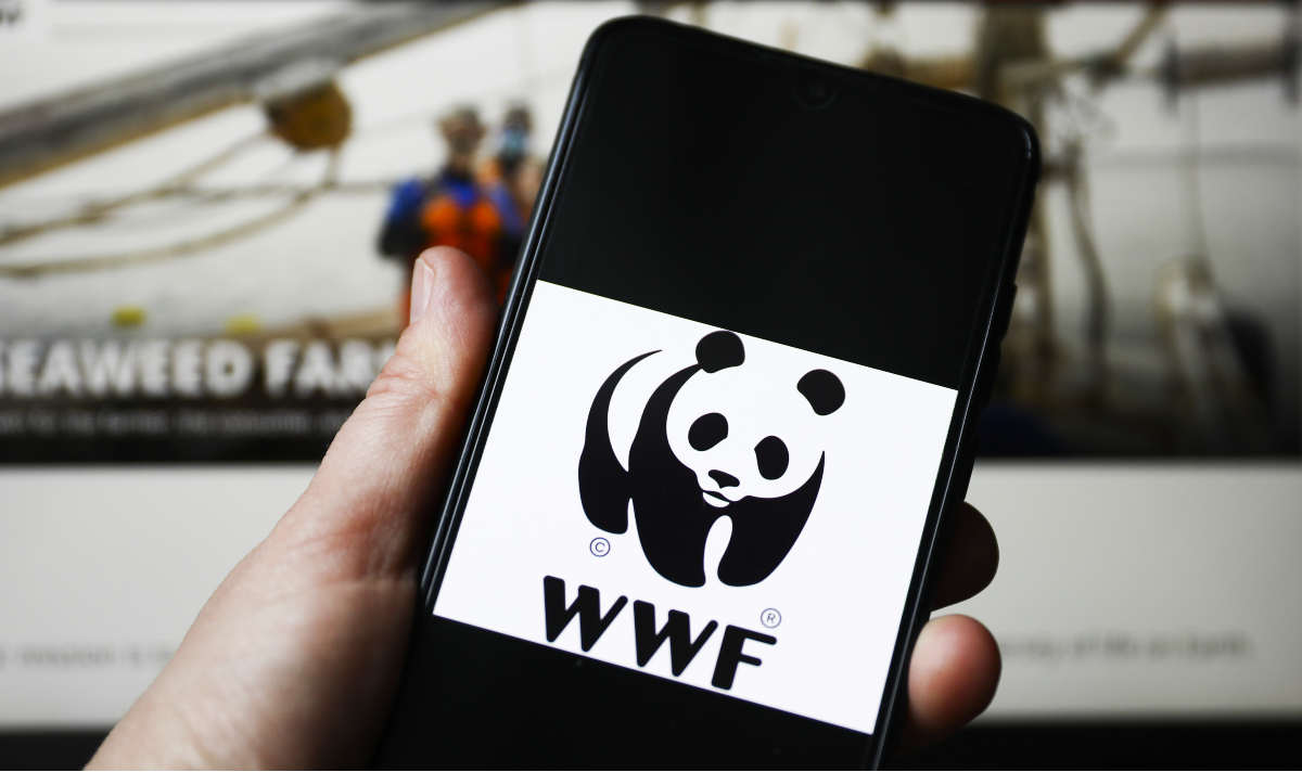 WWF is an independent and non-partisan organisation that was set up in 1961.