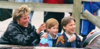 Picture of Harry, William and Diana at Thorpe Park